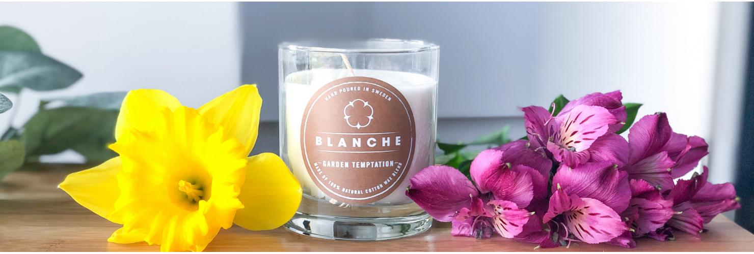 Bavlníkové svíčky Blanche